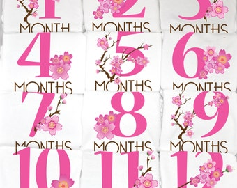 Cherry Blossom Monthly Baby Onesies, 12 Month Set, Unique Baby Gift
