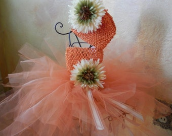 Orange Tutu Dress And Matching Hat