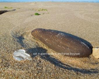 Lake Michigan Beach Glass and Driftwood - Matted Photo