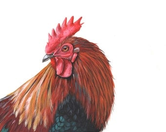 Rooster painting - bird art - print of watercolor painting 5 by 7 size, bird art, wall art, home decor