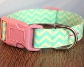 Aqua Chevron Dog Collar - Girl Dog Collar - Bright Dog Collar - Chevron Dog Collar