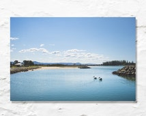 pelican photograph landscape photo fine art photography blue sky lake white clouds love birds couple wall decor