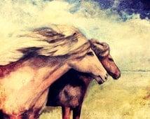 horses ridding art print