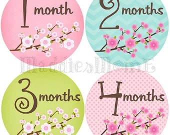 Baby Girl Monthly Stickers -INSTANT DOWNLOAD - DIY Printable pdf Blossom Flowers Floral (Blossom)