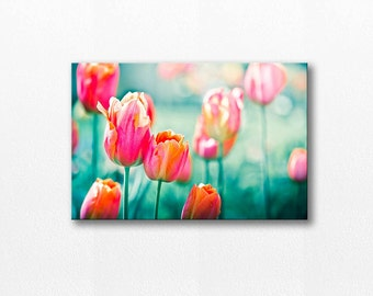 flower photography floral canvas art 12x12 24x36 fine art photography canvas print wall decor nature canvas tulip canvas wrap red pink teal