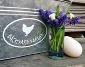 BACKYARD FARMER Hen White Vinyl Car Window Sticker Decal Oval by Fresh Eggs Daily
