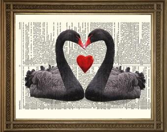 "LOVE HEART SWANS: Dictionary Art Print Book Page, Black Bird Gift (8 x 10"")"