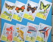 Lot of 8 vintage game cards from the 60s, with different animal illustrations. Great for scrapbooking.