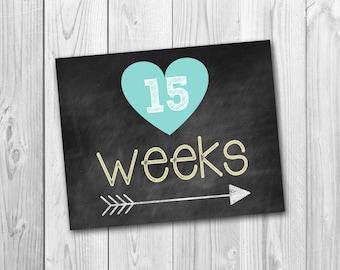 Pregnancy chalkboard, pregnancy countdown, chalkboard printable, photo prop, 33 files