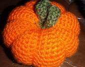 Catnip Pumpkin RESERVED for Deana Pfaus