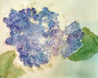 Blue Hydrangea Original Watercolor Painting by Theresa Smith 8x10