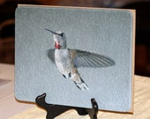 Glass Cutting Board - Rufous Hummingbird - 7.75in  x 10.75in