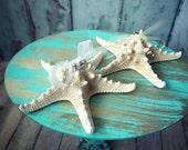Beach-ring holder-ring bearer-starfish-destination wedding-wedding-bride-nautical-ring pillow-ring box-sea shell-groom-weddings-cake topper
