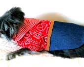 Little Dog's Cowgirl Dress Made to Order for Small Dog Bandanna Print Bodice, Fringe, Gingham Scarf and Indigo Denim Skirt