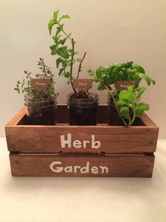 Indoor Rustic Wood Herb Garden With Mini Mason Jars And Herb