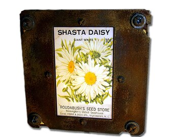 Country Chic Daisy Night Light Seed Packet
