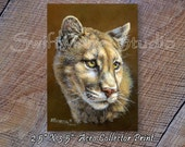 ACEO Cougar Print - ACEO Wildlife Card - Wild Cougar Print - Artist Trading Card - Wildlife Art - Animal Print - Mountain Lion Image