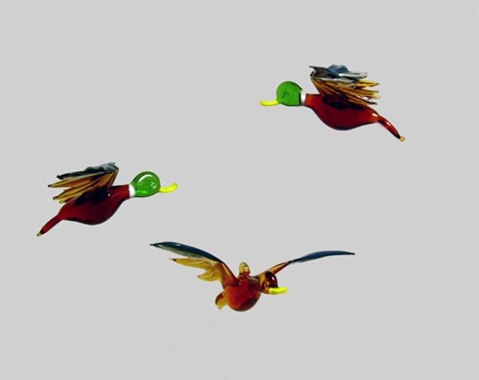 e36-302 Mallard Duck
