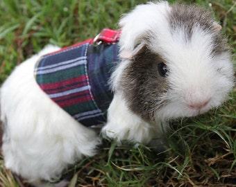 how to make a guinea pig leash
