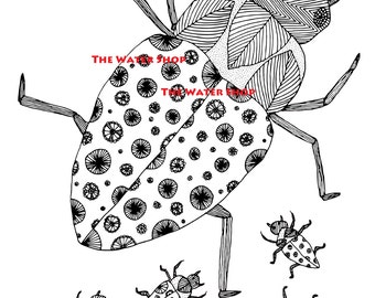Roach Bugs Coloring Page