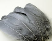 Charcoal Grey Green Goose Nagoire Feathers / 10 Loose Feathers
