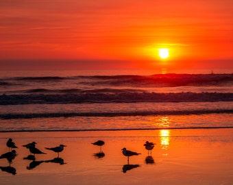 "Beach Sunrise Photograph Print  ""Jacksonville Beach Morning"" 8x12 (and larger) Fine Art Photo Print"