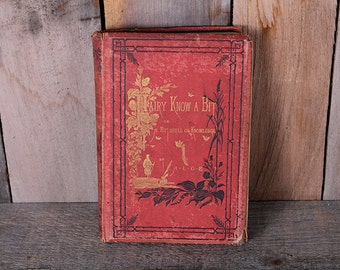 1878 Fairy Know a Bit by ALOE Hand colored Illustrations Victorian Fiction with Inscription