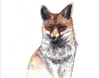 A4 Fox Illustration ORIGINAL