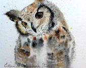 Great Horned Owl watercolor print by Ellen Brenneman