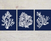 Blue Coral Wall Art, Navy Blue Coral Print, Navy White Wall Art, Navy Blue Home Decor, Coral Print, Set of three
