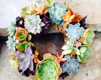 """13"""" bright succulent wreath"""