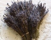 Dried Lavender Hidcote Bunch - Box of 50