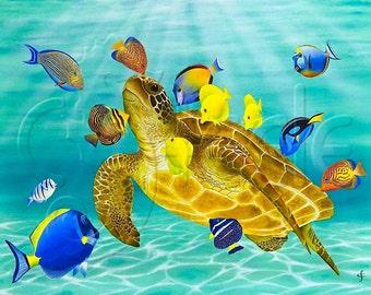 Green sea turtle, surgeonfish, tang fish, sun dappled water, tropical seas, snorkel, scuba: Kiss Fest