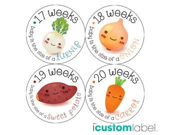 Pregnancy Stickers - Belly Stickers - Baby Bump Weekly Stickers