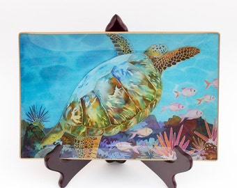 """The """"Turtle Beauty""""  Plate - stories of the childhood"""