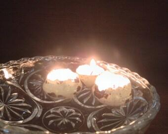 Quail Egg Shell Floating Candles - Set of 6
