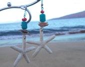 Turqouise Starfish earings