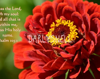 Red Zinnia, inscribed with scripture from the King James Version of the Bible