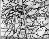 Bolinas Lagoon  - Original Etching & Engraving, Hand-printed, Limited Edition
