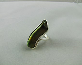 Silver Ring with Falcon Eye