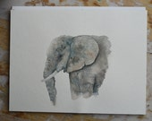 African Forest Elephant || Original Watercolor Illustration || Animal Art || Elephant || Whimsical ||