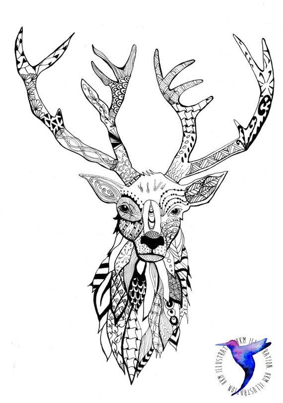 deer skull coloring pages - photo#36