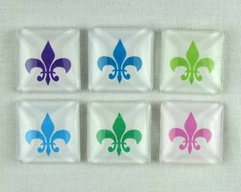 Set of Six Magnets Fleur de Lis in Tin Gift Box