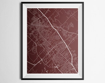 College Station, Bryan, Texas A&M, Texas Abstract Street Map Print