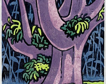 Big Tree - moku hanga woodblock print of Monkeypod tree in Hawai'i; signed limited edition of 6.