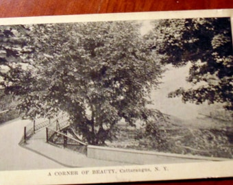 POSTCARD Early 1900s Picture cared of Cattarangus, NY