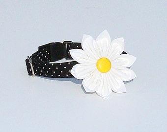 Polka Dot Dog Collar with Daisy