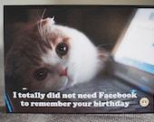 Funny Cat Birthday Card - Facebook