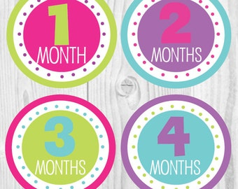 FREE GIFT Baby Girl Monthly Stickers, Baby Monthly Stickers, Monthly Baby Stickers, Girl Monthly Sticker, Baby Month Sticker
