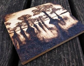 CYPRESS SWAMP SCENE On Louisiana Bayou On a Distressed Poplar Wood Plaque